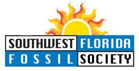 The Southwest Florida Fossil Society
